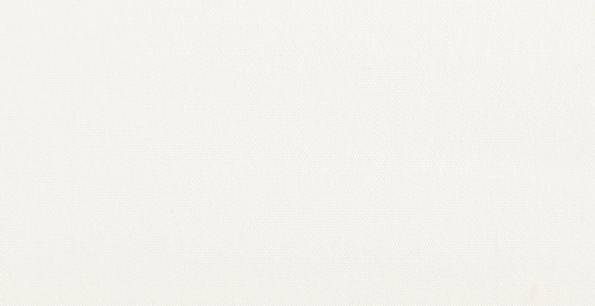 blanco-2042.jpg